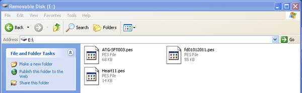 Embroidery Files in Removable Disk